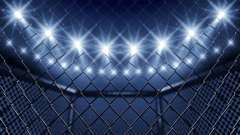 Khabib vs Gaethje i UFC 254