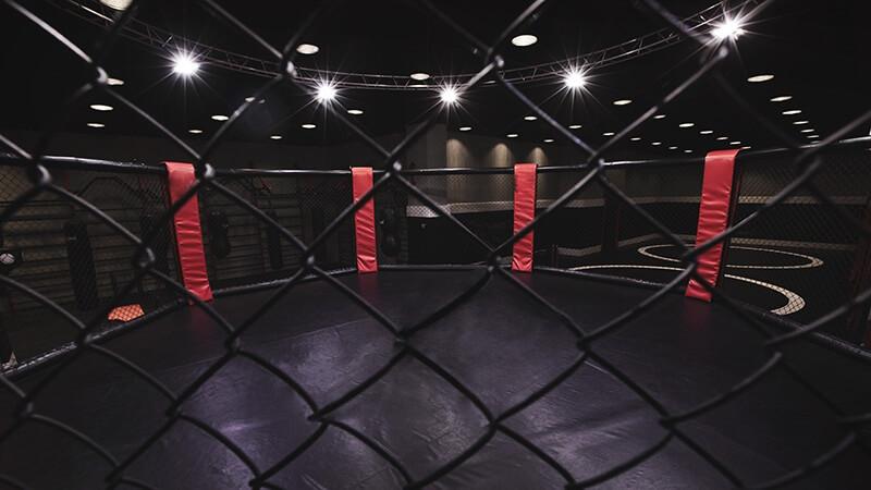 UFC 261: Kamaru Usman vs Jorge Masvidal 2